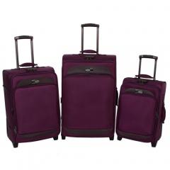 Комплект чемоданов 118-6080/3-PRP Francesco Molinary FMolinary Франческо Молинари FMolinari Molinari